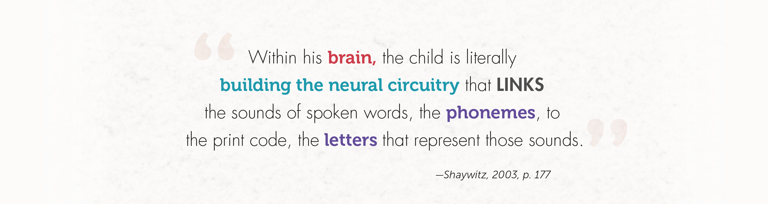 Within his brain, the child is literally building the neural circuitry that links the sounds of spoken words, the phonemes, to the print code, the letters that represent those sounds.